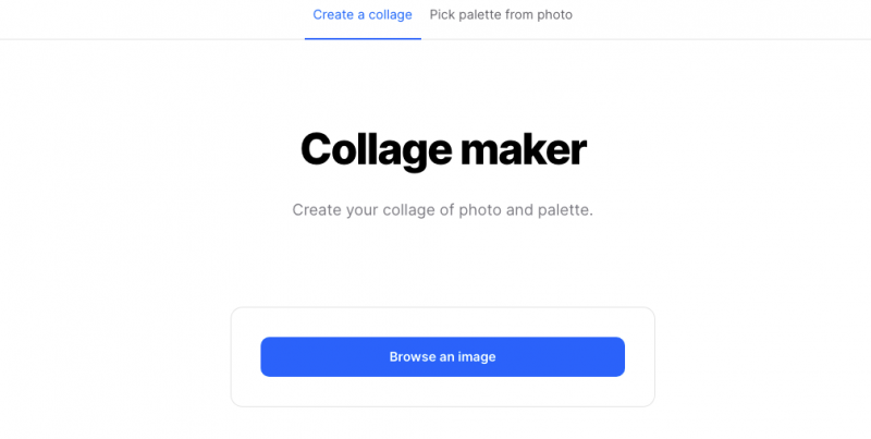 collage maker in coolors